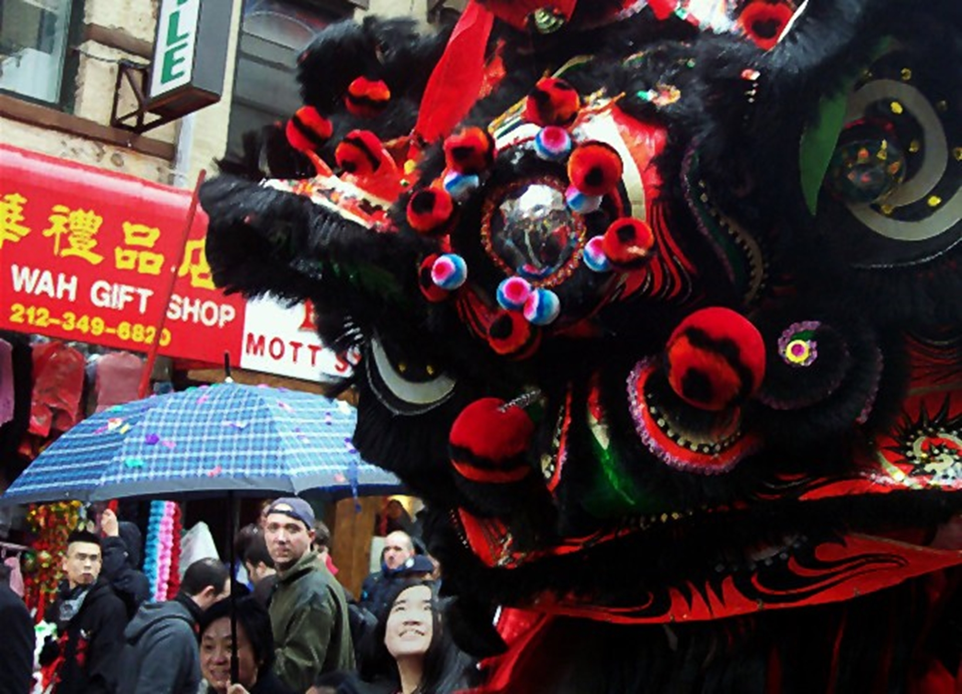 Chinese New Year of the Dragon