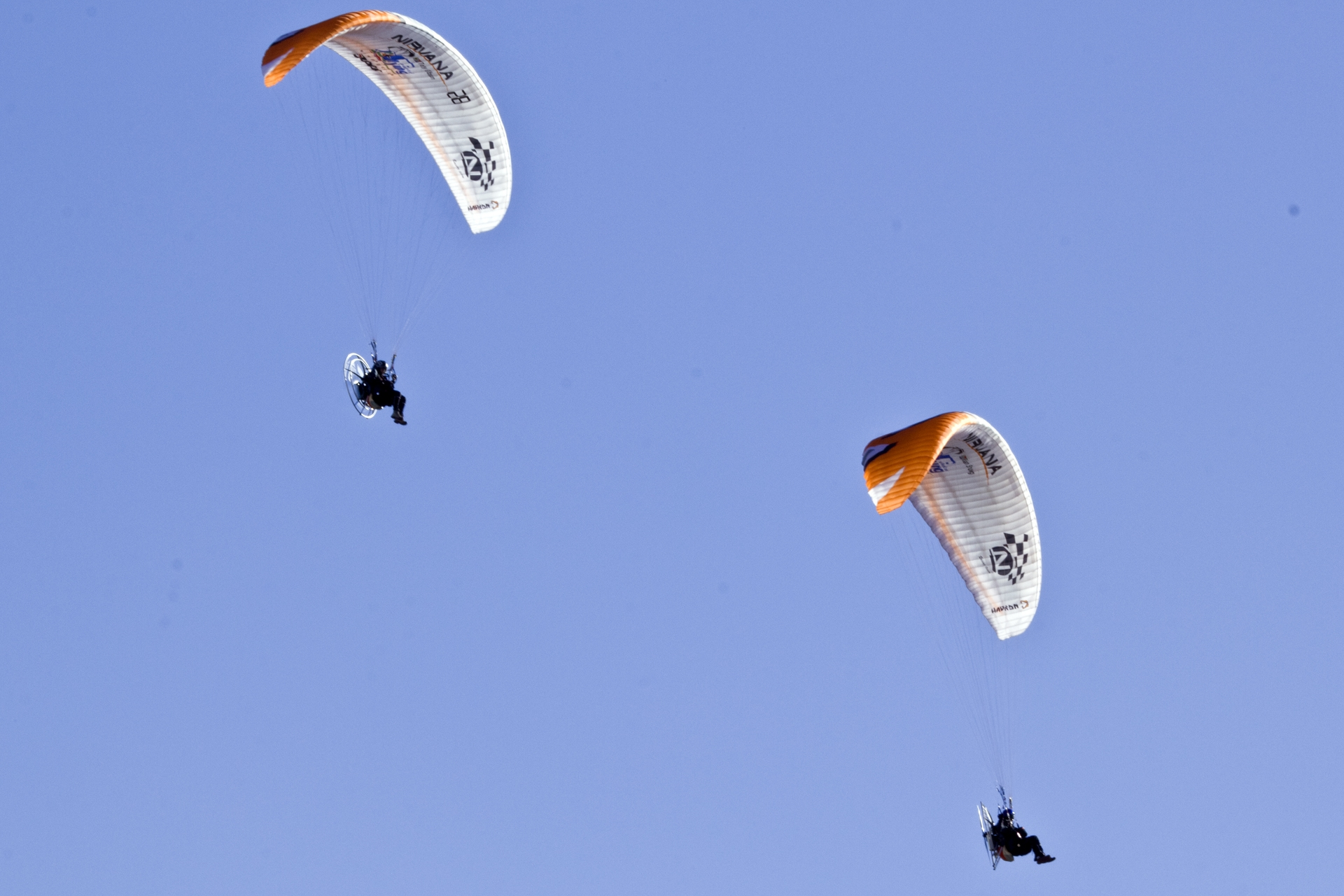 Paragliding at the Airshow
