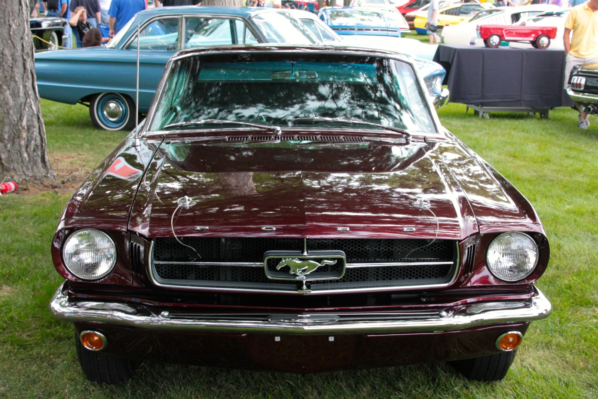 1964_Ford_Mustang